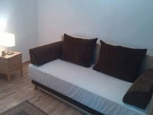 Apartament Lunca Jariștei, Apartament Studio 4
