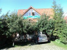 Bed and breakfast Răchitișu, Randevu Guesthouse
