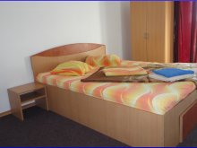 Accommodation Ilfoveni, Raffael Guesthouse