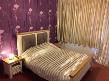 Bed & breakfast Hodăi-Boian, Viena Guesthouse