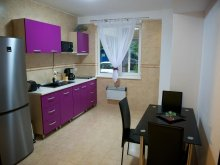 Accommodation Techirghiol, Allegro Apartment