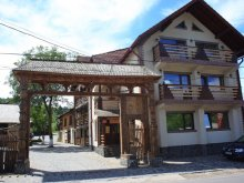 Bed & breakfast Nușeni, Lăcrămioara Guesthouse