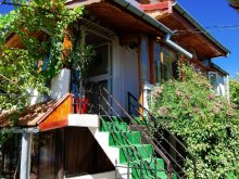 Accommodation Curcani, Amiral Agrement Vila