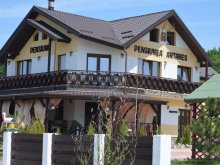Accommodation Prisăcani, Antares Guesthouse