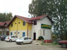 Accommodation Dimitrie Cantemir, Marc Guesthouse