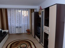 Apartament Deoncești, Apartament David