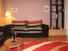 Apartament Pârjolești, Boemia Apartment