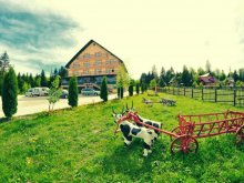 Bed & breakfast Suceava, Poiana Bucovat Guesthouse