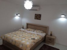 Accommodation Sascut-Sat, Bogdan Apartment