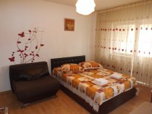 Accommodation Cleanov, Trend Apatment