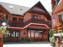 Bed & breakfast Cristuru Secuiesc, Sziklakert Guesthouse