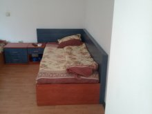 Accommodation Cleanov, Angelo King Motel