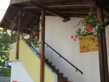 Accommodation Burdea, Ana Guesthouse
