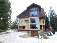 Villa Livezile (Valea Mare), Mountain Retreat