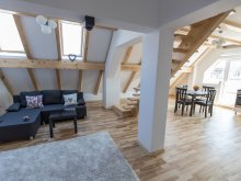 Apartment Cojoiu, Transylvania Boutique Duplex Apartments 2