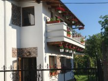 Vilă Cucuta, Luxury Apartments