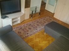 Accommodation Salonta, Rogerius Apartment