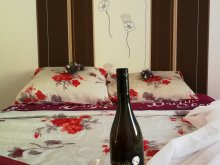 Package Heves county, Szakácshuligánok Wine and Gastronomy Apartments