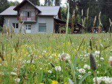 Accommodation Măgulicea, Georgiana Chalet