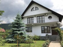 Vacation home Șieu-Sfântu, Ana Sofia House