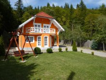 Accommodation Băile Homorod, Banucu Florin Guesthouse