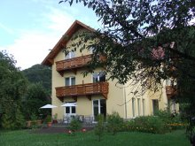 Bed & breakfast Valea Mare (Urmeniș), Foenix Guesthouse