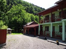 Bed & breakfast Valea Mare (Urmeniș), Niko Guesthouse