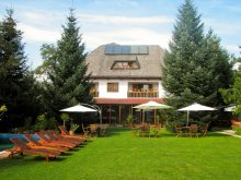 Accommodation Livezile (Glodeni), Transilvania House Guesthouse
