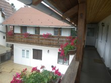 Accommodation Elciu, Katalin Guesthouse
