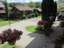Bed & breakfast Cristuru Secuiesc, Evelyn Guesthouse
