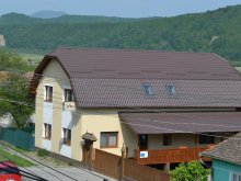 Accommodation Gaiesti, Pension Atos Agrotourism