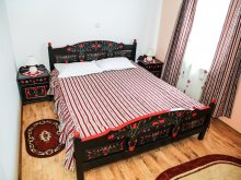 Bed and breakfast Câmpenești, Sovirag Pension