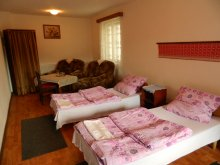 Bed and breakfast Covasna county, Jázmin Guesthouse