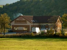 Bed and breakfast Răchitișu, Szentkirály Pension
