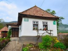 Accommodation Gârbova de Jos, Nosztalgia Guesthouses