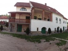 Guesthouse Feneș, Panoráma Pension