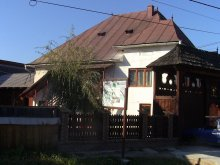 Accommodation Baia Sprie, Rednic Lenuța Guesthouse