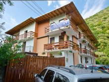 Accommodation Padina Matei, President B&B