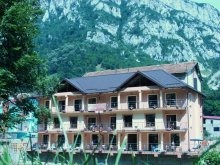 Accommodation Berzasca, Camelia Holiday Apartments