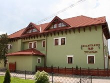 Bed and breakfast Asău, Tulipan Guesthouse