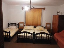 Accommodation Muntele Bocului, Anna Guesthouse