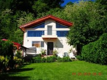 Accommodation Plopu, Vila Munte