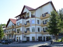 Accommodation Dealu Frumos, Vila Marald