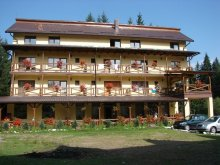 Accommodation Izbuc, Vila Vank