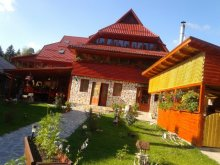 Bed and breakfast Mizieș, La Vasile Guesthouse