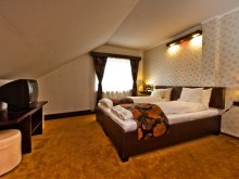 Bed and breakfast Cincu, Chic Guesthouse