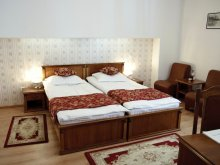 Accommodation Pustuța, Hotel Transilvania