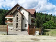 Accommodation Recia-Verbia, Bucovina Guesthouse