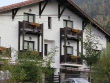 Bed & breakfast Târcov, Unio Guesthouse