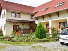 Bed and breakfast Corbasca, Bagolyvár Guesthouse